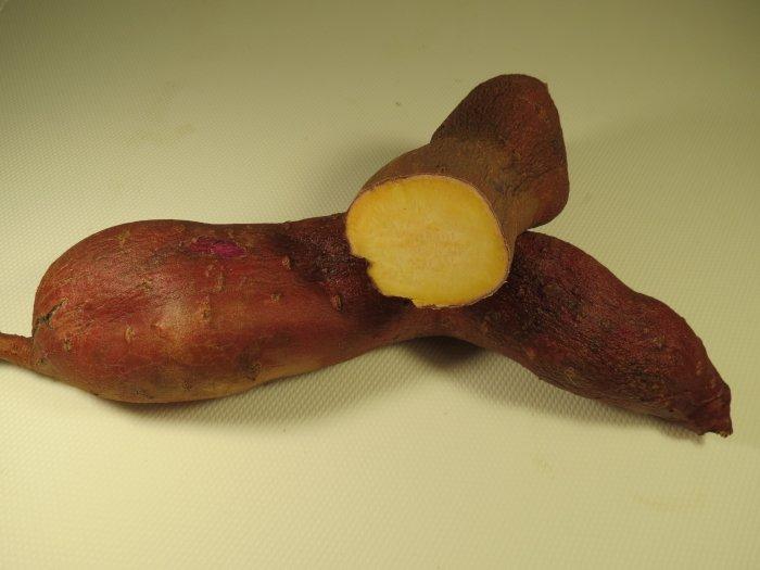 Батат - сорт бурячный (киевский помаранч, перлина киева)
