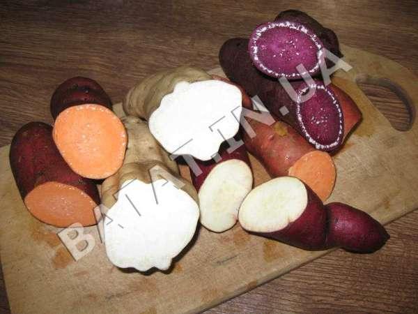 Фото мякоти сладкого картофеля