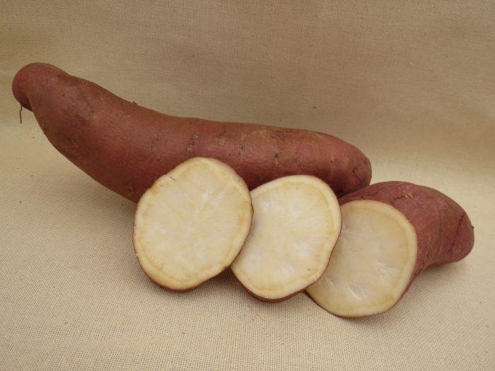 Сорт батата - винницкий розовый или гоча